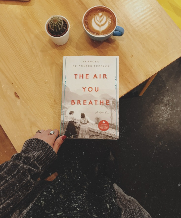 The Air You Breathe by Frances de Pontes Peebles: the wonders of a female friendship